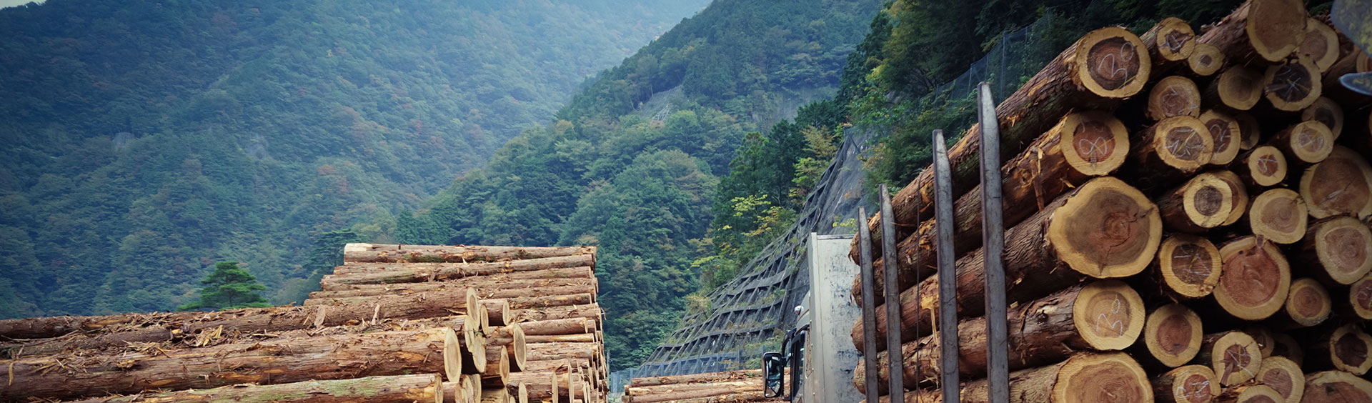 Lumber Supply NJ