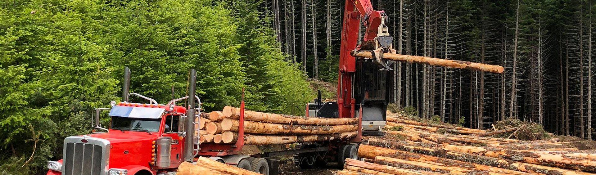 Seneca lumber mill
